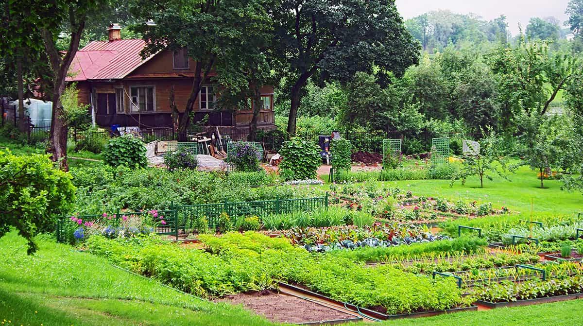 Self-sufficient gardening